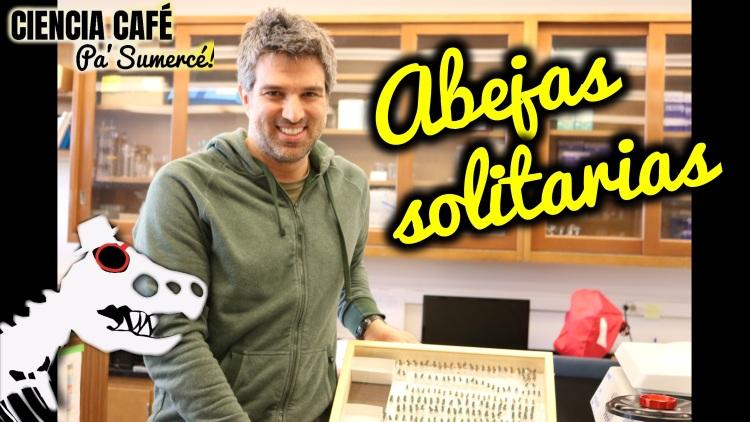 Thumbnail_abejas_youtube
